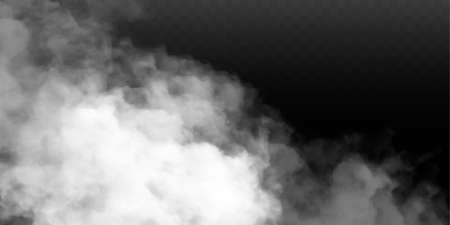 Fog or smoke isolated transparent special effect. White vector cloudiness, mist or smog background. Vector illustration 矢量图像