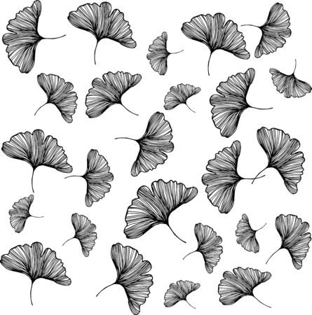Ginkgo biloba leafs on white background pattern foliage plant medicine silhouette abstract white wallpaper illustration design nature floral hand drawn healthcare print monochrome outline