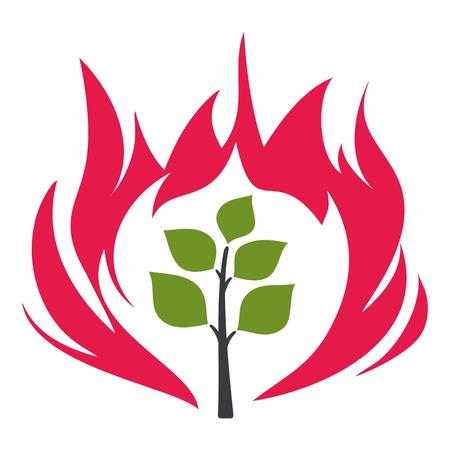 burning bush: burning bush