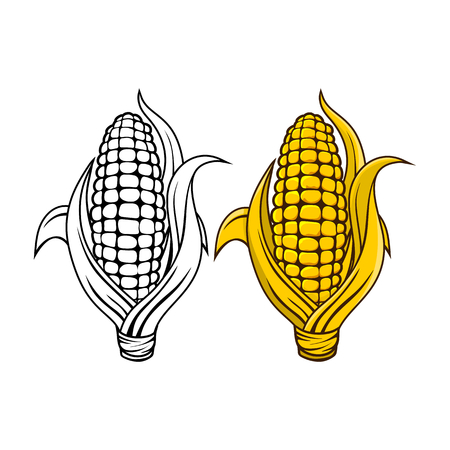 702 Indian Corn Stock Vector Illustration And Royalty Free Indian