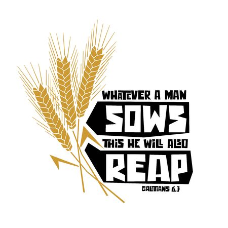 Christian typography, lettering and illustration. Whatever a man sows this he will also reap.