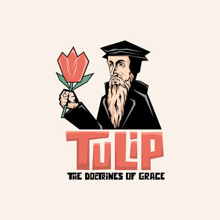 TULIP - The doctrines of grace. The main five points of Calvinism. 矢量图像