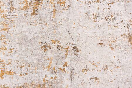 Peinture caille Sur Un Fond De Mur Ancien  Ancien Mur En Bton