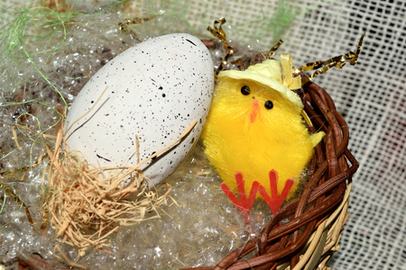 broken eggs: decorated egg with chick inside a wicker basket Stock Photo