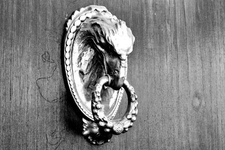 Close-up of brass knocker depicting a dragon Reklamní fotografie