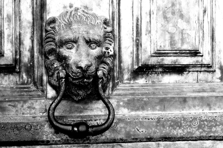 Close-up of brass knocker depicting a lion