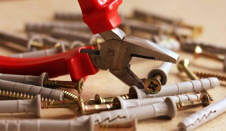 Pliers with dowels photo