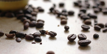 Scattered coffee beans Stock Photo
