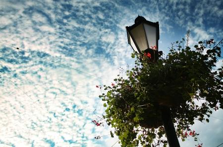 Beautiful lantern photo