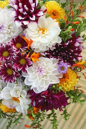 georgina: Autumn bouquet Stock Photo
