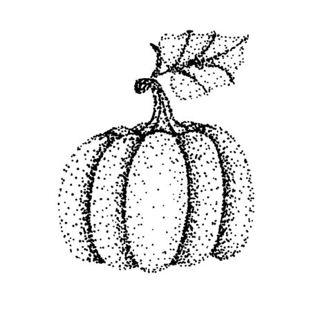 Drawing of pumpkin - hand sketch with black pen, black and white illustration Çizim