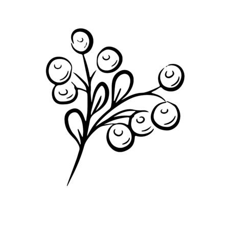 Berry Fruit, Illustration Hand Drawn Sketch of Berries Isolated on White Background. Black and white vector illustration in doole style