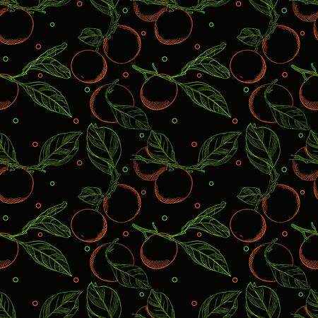 Seamless pattern with tangerines on branches with leaves. Color vector pattern with citrus fruits. Elements with contour are drawn by hand on a black background. Pattern for packaging and textiles.