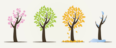 Set of four seasons trees. Winter, autumn, spring and summer