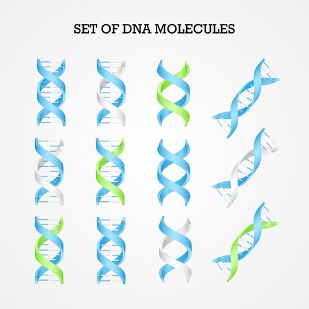 Human DNA molecule symbols set, genetics elements and icons collection 일러스트