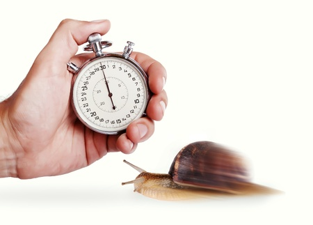 Speedy snail. Concept image with stopwatch and snail photo