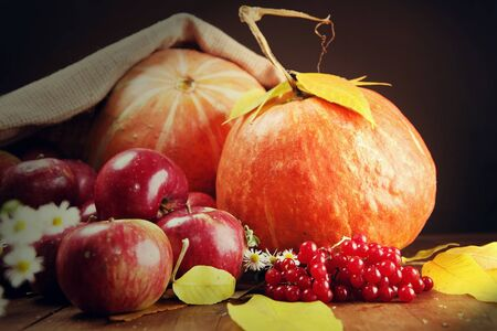 rich life: Autumn still life with pumpkins and apples on the table Stock Photo