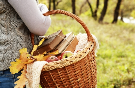 hand basket: Closeup image picnic basket with apples, books and handmade shawl in woman hand Stock Photo