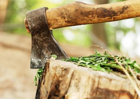 Old axe thrust in the wooden block photo