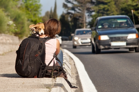 hitch hiker: Hitchhike traveler with dog on the waiting for a car Stock Photo