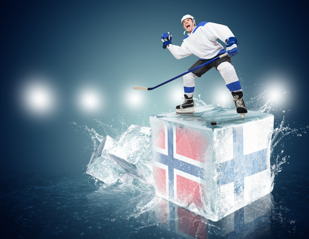 spunky: Spunky hockey player on ice cube of Norway - Finland game