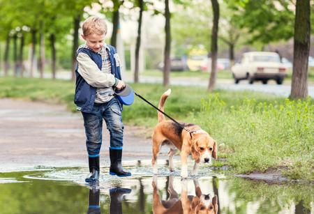 Garçon avec un chien guide à travers la flaque Banque d'images