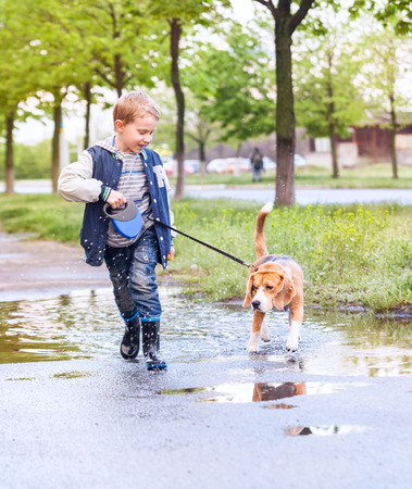 Boy walk with pet through the puddle after spring rain photo