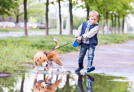 小さな男の子の大きな水たまりを介して彼のペットと歩く