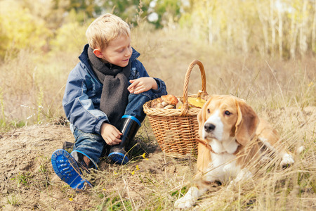 Pretty little boy on autumn forest glade with basket ful of mushrooms photo