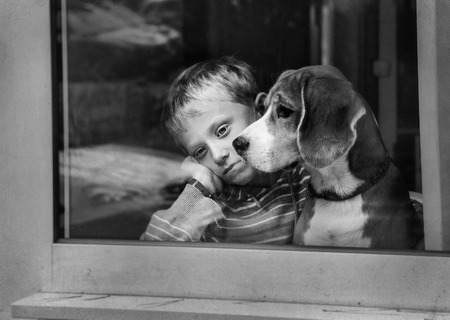 Alleen triest jongetje met hond in de buurt raam Stockfoto