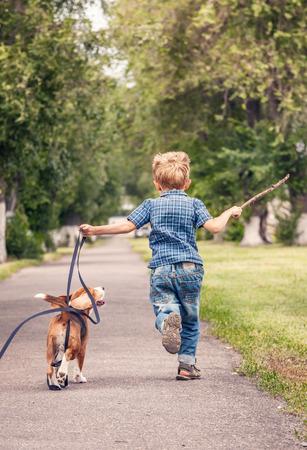 男の子が彼のビーグル犬の子犬と遊ぶ 写真素材