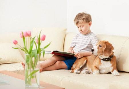 modern sofa: Reading boy with beagle on sofa in cozy home Stock Photo