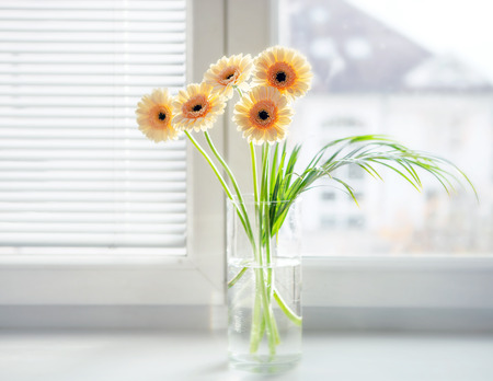Gerberas bouquet in vase on the windowsill with bright daylight photo