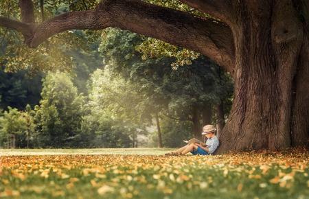 Kleine jongen het lezen van een boek onder grote lindeboom