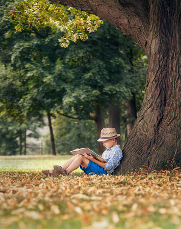 niños sentados: Readind Muchacho bajo el árbol de tilo grande Foto de archivo
