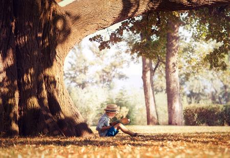Gouden middag droom. Jongen lezen boek onder grote boom