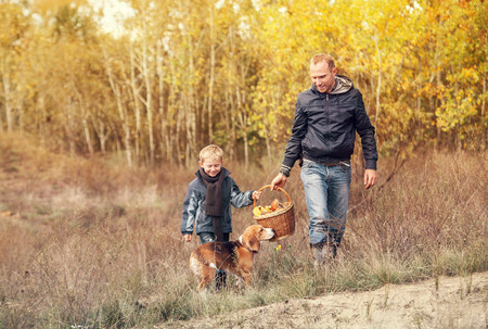 mushroom: Son with father carry full basket of mushrooms in autumn forest Stock Photo