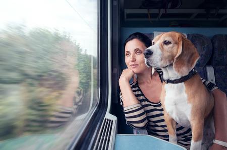 vrouw op de trein met hond Stockfoto
