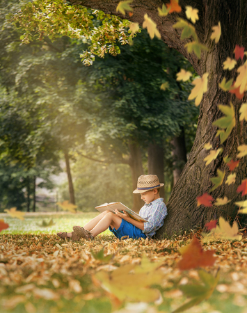 Boy readind under the big linden tree Stock Photo
