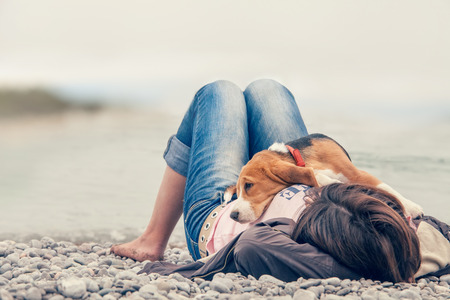 Little beagle pup liggend op zijn eigenaar borst aan de zeezijde