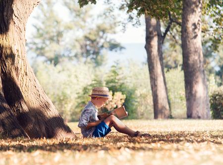 Jongen een boek lezen in de boom schaduw in zonnige dag