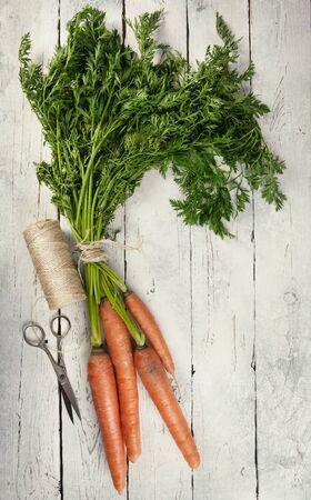 ?  ? carrot: Gavilla de zanahoria fresco