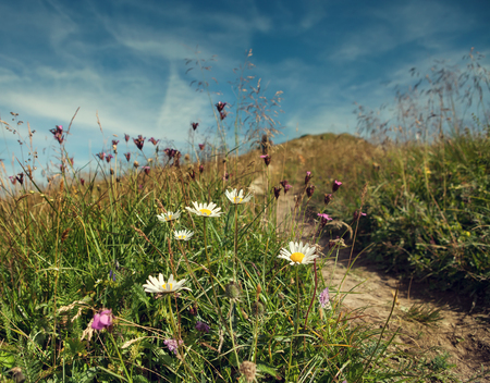 tableland: Mountain tableland under the blue sky Stock Photo