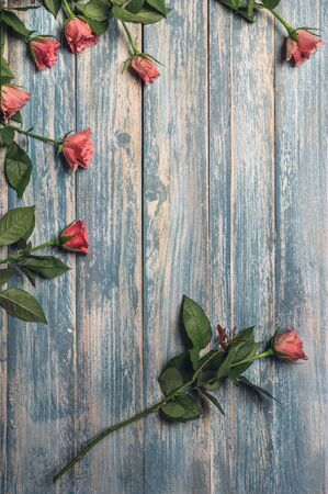 rustical: Grunge wooden background with pink roses
