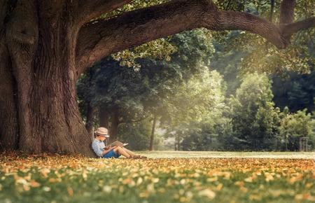 大きなリンデンの木の下で本を読む少年
