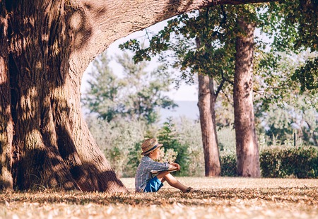 under tree: Boy with book sits under big tree in golden summer afternoon Stock Photo