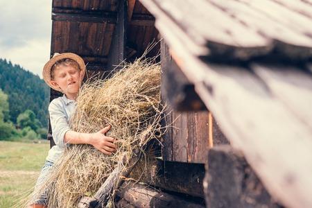 Boy puts the hay in hayloft Stock Photo
