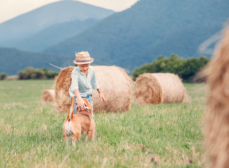 hayroll: Boy plays with dog on the field with hayroll Stock Photo