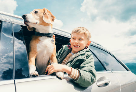 Boy and dog look out from car window