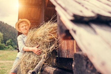 Boy puts the hay in hayloft Imagens